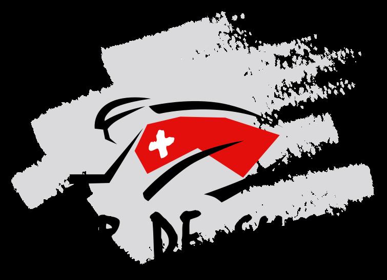Тур Швейцарии . История 1933-2010