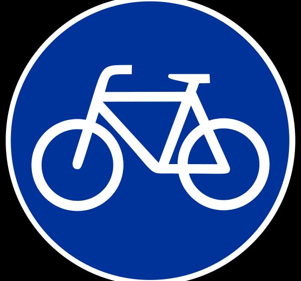 Трое велосипедисток из сборной Южной Кореи погибли в ДТП