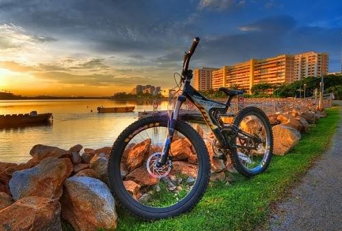 Мода на велосипеды захватила средний класс