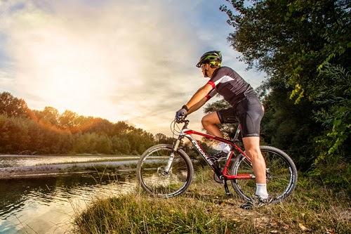 Купить велосипеды Cronus оптом от производителя