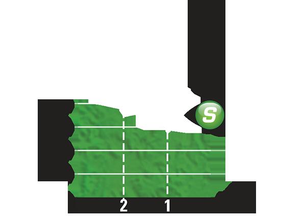 Промежуточный спринтерский финиш 19 этапа Тур де Франс 2015