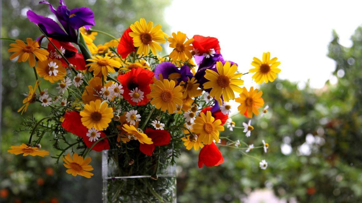 Магазин доставки цветов всегда готов помочь с презентом и поздравлением